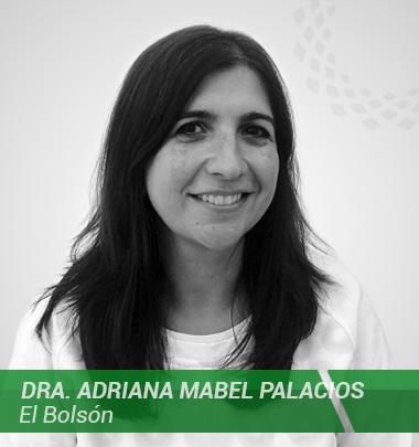 Defensor/a Adjunto-Palacios Adriana Mabel