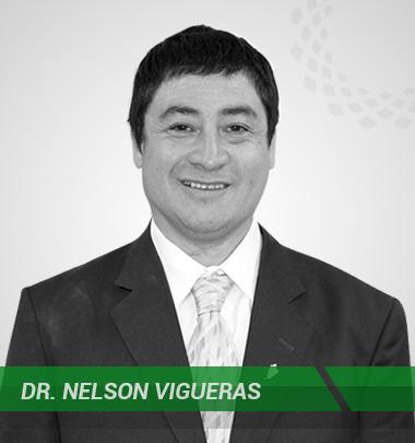 Nelson Vigueras